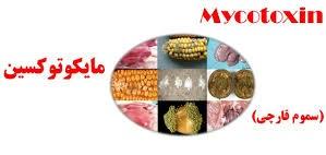 پاورپوینت آشنایی با مایکوتوکسین ها و امنیت غذایی