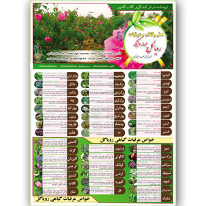 طرح لایه باز بروشور عرقیات گیاهی یک طرفه A3